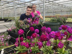 Volunteers help plant up PlantBoxes
